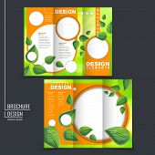 ecology concept tri-fold template brochure with leaf element in green and orange poster
