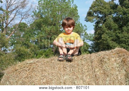 sitting on a haybale