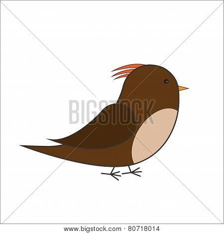 brown bird vector