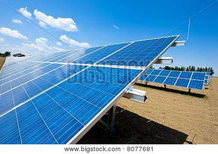 Solar Panels On A Farm