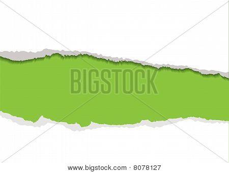 Green Torn Strip Background