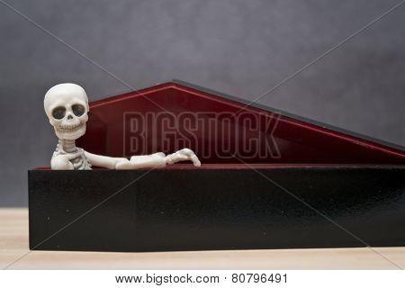 Skeleton in the coffin