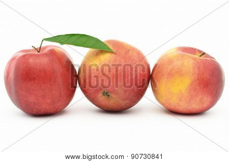 Red, Ripe Apples Jonagold Isolated On White Background