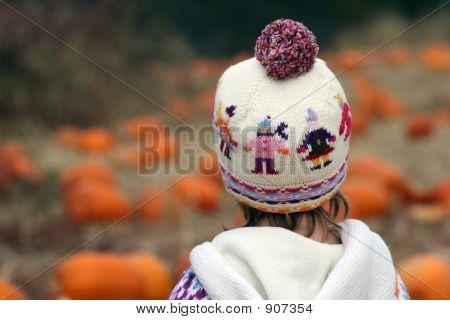 Looking Over Pumpkin Patch #2