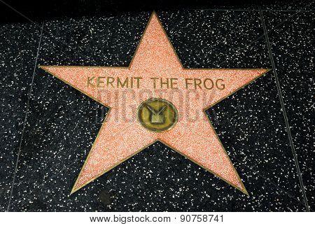 Kermit The Frog Star