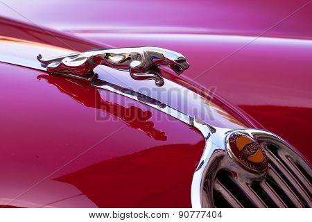 Red luxury retro sports car - Jaguar