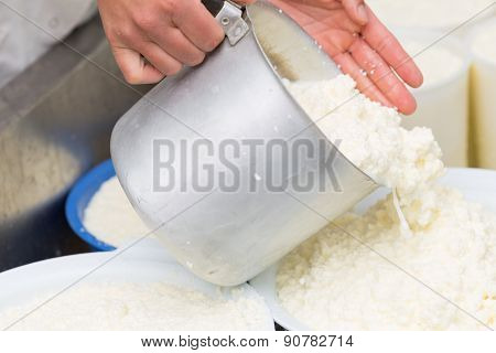 Craft Making Cheese