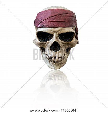 Skull wearing maroon bandanna, isolated on white background