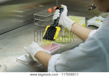 Researcher transfers testing fluid