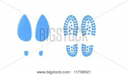 Shoe Footprints