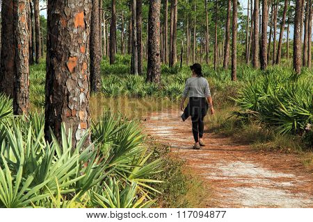 JUPITER, FL - JANUARY 31: A fit woman hikes along the scenic Kitching Creek Trail in Jonathan Dickinson State Park January 31, 2016 in Jupiter, Florida.