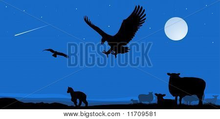 night, moon, sheep and eagles on the hunt poster