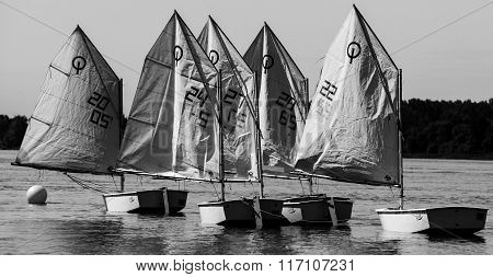 Small sailboats tied together to a mooring buoy with sails deployed in black and white. Photographed during the Quebec provincial summer games 2014's sailboat competition.