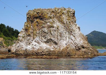 Rock at Cape Giant, Sakhalin Island