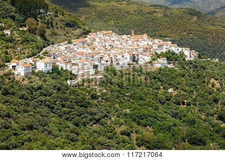 Andalusian village (Pueblos Blancos) in Sierra de las Nieves, Malaga, Spain