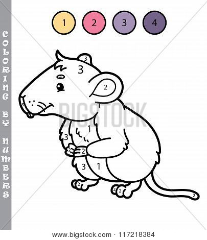 Coloring by numbers vole