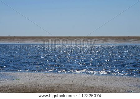 Summer at the wadden sea, Denmark