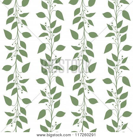Seamless pattern branches and leaves of Camphor laurel. Floral background.