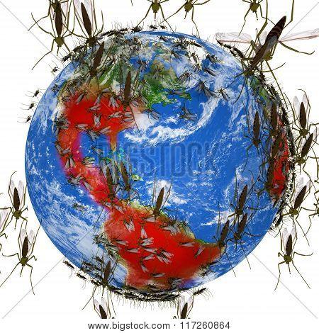 Zika Virus Spreads Globally