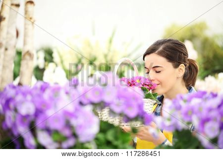 Springtime Woman In Flowers Garden Smell The Primroses In Wicker Basket