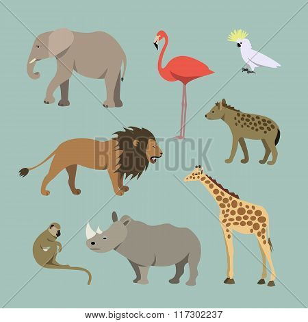 Set Of Different African Animals. Animals of the African savanah lioness, elephant, rhinoceros, gira