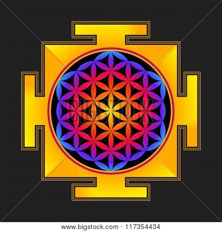 Colored Flower Of Life Yantra Illustration.