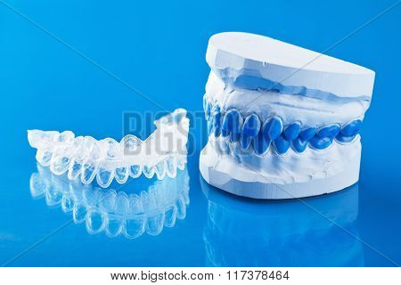 individual tooth tray for whitening and mold