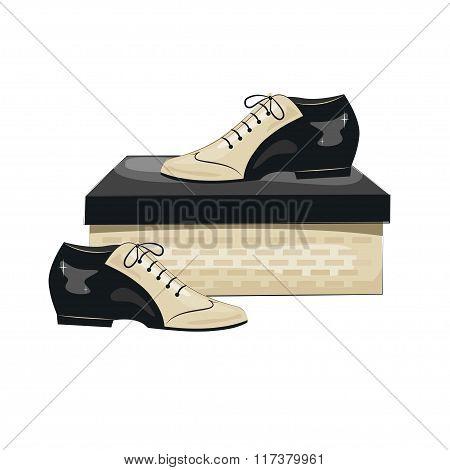 Elegant men's shoes on the box.