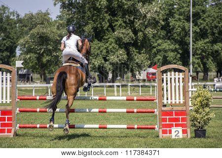 Young Girl Jumping On Horseback