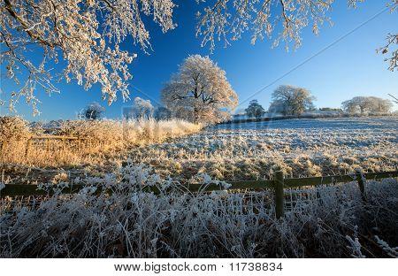 Rural England in Winter