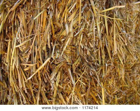 Hay Straw Background