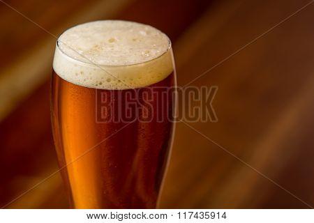 Fresh Pint Of Cream Ale