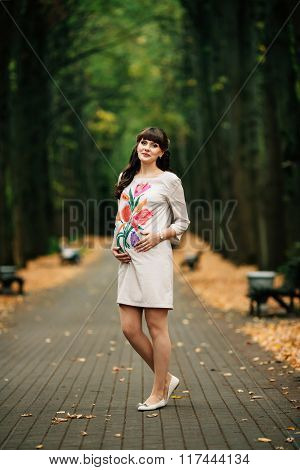 Beautiful Pregnant Woman Is Standing Lovely On The Yellow  Lawn.