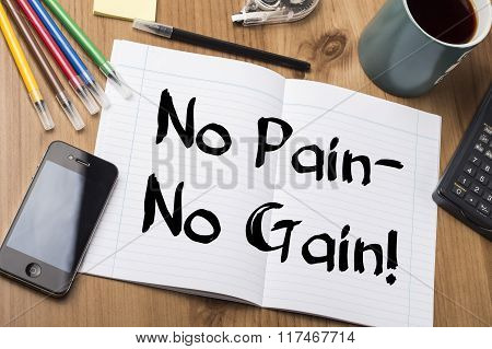 No Pain - No Gain! - Note Pad With Text On Wooden Table