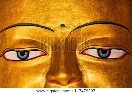 Sakyamuni Buddha statue face close up in Shey gompa (Tibetan Buddhist monastery). Shey, Ladakh, India