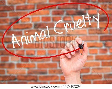 Man Hand Writing Animal Cruelty With Black Marker On Visual Screen