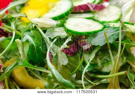 Salad From Leafs