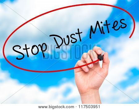 Man Hand Writing Stop Dust Mites  With Black Marker On Visual Screen.