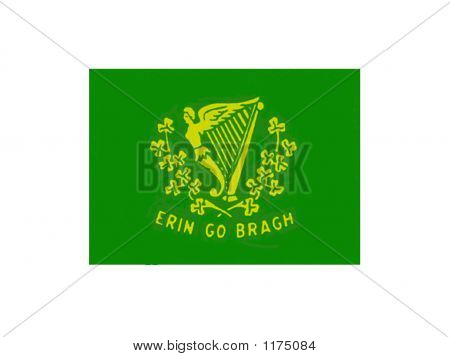 Saint Patties Flag