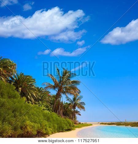 Jandia Sotavento beach Fuerteventura at Canary Islands of Spain photomount