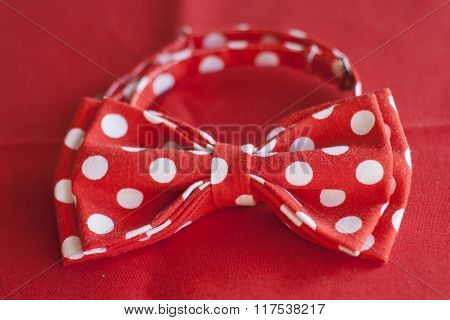 Red Polka Dot Tie Butterfly Rests On A Red In Background