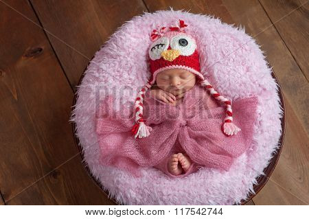 Newborn Girl With Owl Hat