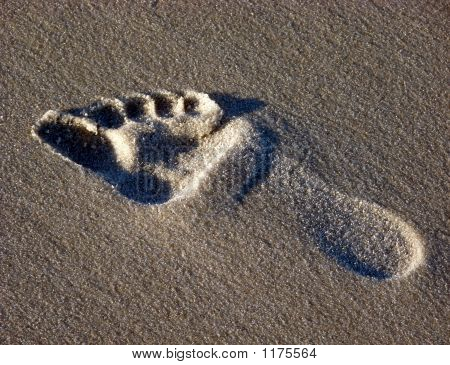 Footstep In The Sand