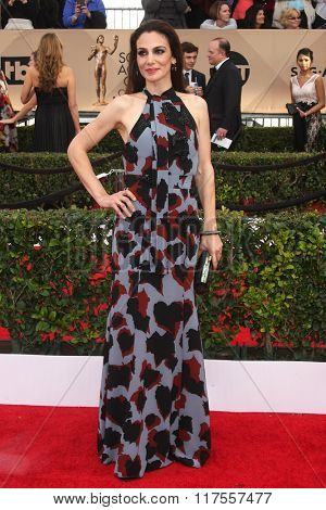 LOS ANGELES - JAN 30:  Annie Parisse at the 22nd Screen Actors Guild Awards at the Shrine Auditorium on January 30, 2016 in Los Angeles, CA