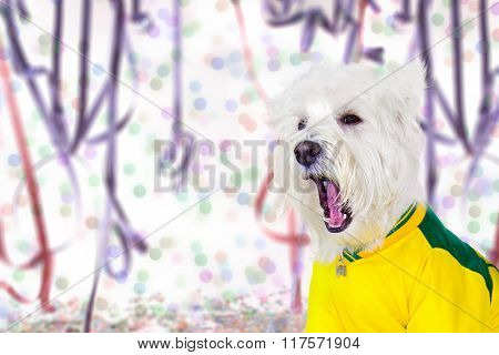West Highland White Terrier enjoying the Carnival