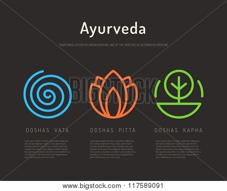 Ayurveda Body Types