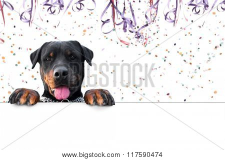 Carnival rottweiler message - Copy space