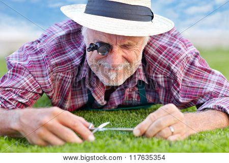 Senior Gardener Cutting Grass 4