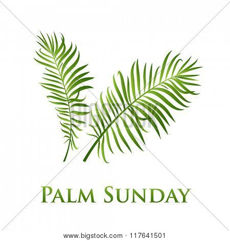 Palm leafs vector icon. Vector illustration  for the Christian holiday Palm Sunday