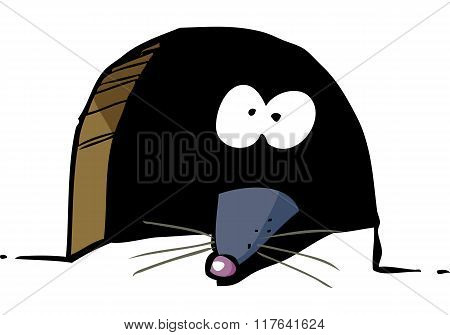 Mouse In Hole